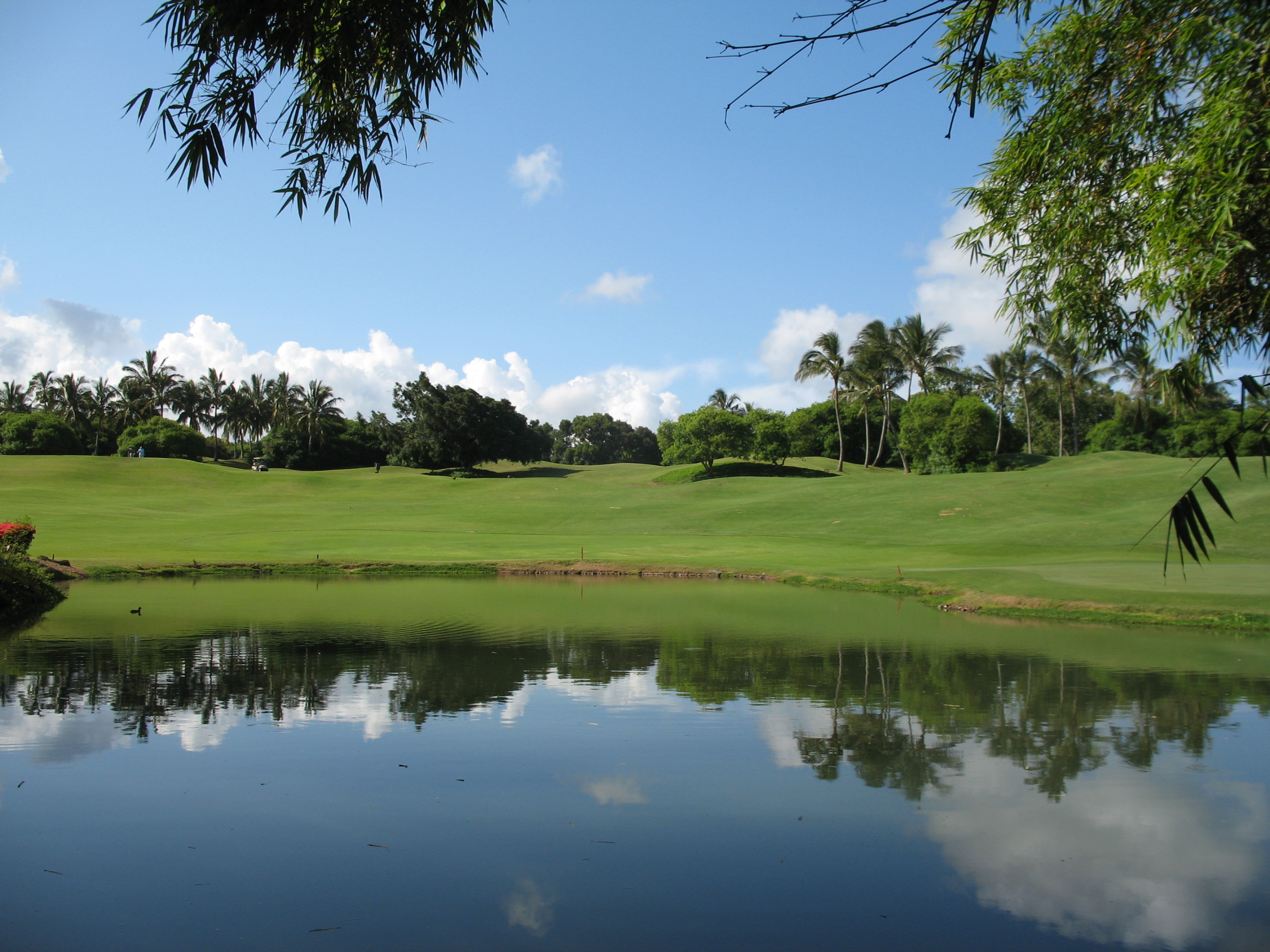 Recreational:  Kauai Lagoons Golf Course