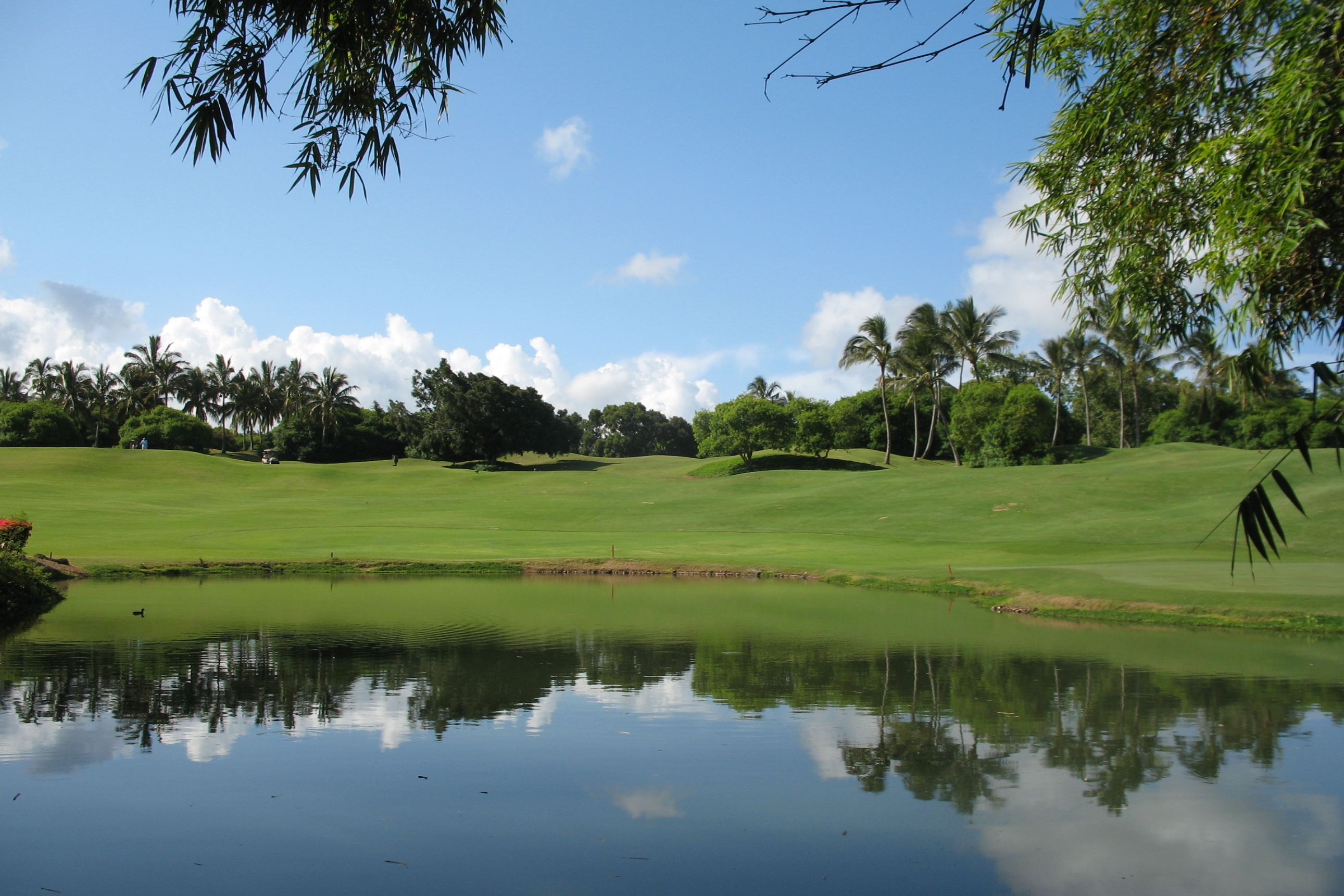 Recreational:  Kauai Lagoons Golf Course