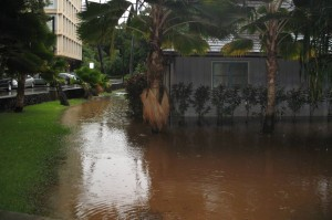 UH at Manoa Krauss Hall Drainage