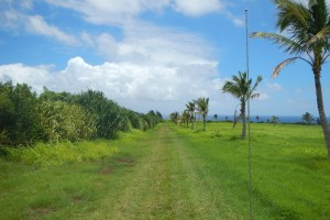 Moloaa Agriculture Subdivision