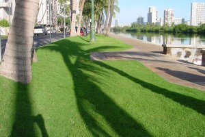 Ala Wai Boulevard Improvements