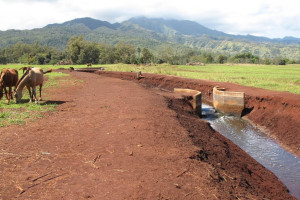 Waialua Agricultural Subdivision
